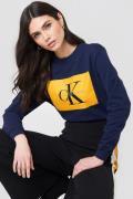 Calvin Klein Hebe True Icon Sweater - Multicolor,Navy