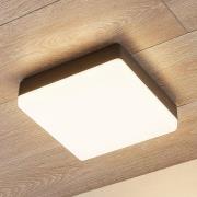 LED-loftlampe Thilo, IP54, grå, 24 cm