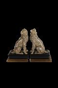 Bogstøtte Cheetah