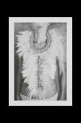 Plakat Shells & Feathers 50x70cm