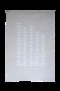 Håndprintet Poster Dragonflies 50x70 cm
