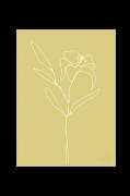 Plakat Lily
